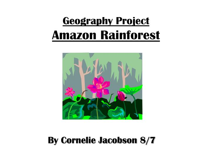 geography project amazon rainforest