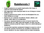 rainforests i