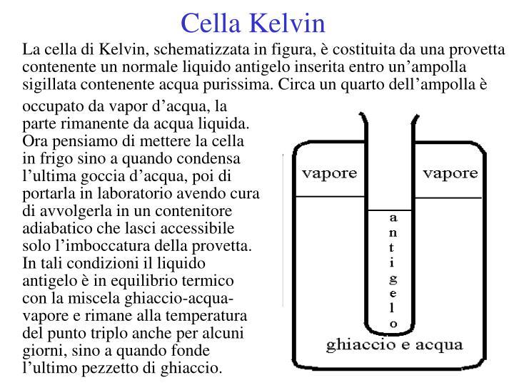 Cella Kelvin