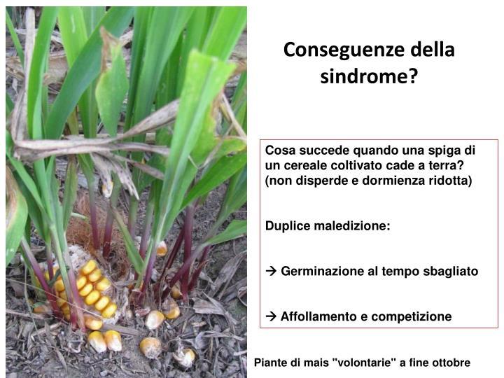 Conseguenze della sindrome?