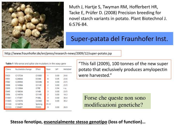 Super-patata del Fraunhofer Inst.