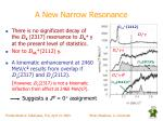 a new narrow resonance2
