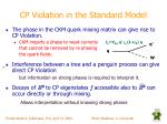 cp violation in the standard model