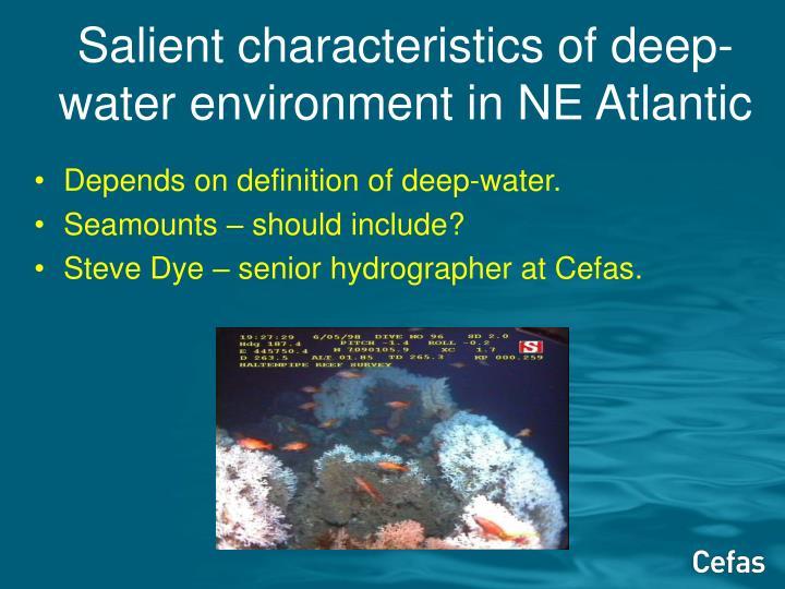 Salient characteristics of deep-water environment in NE Atlantic