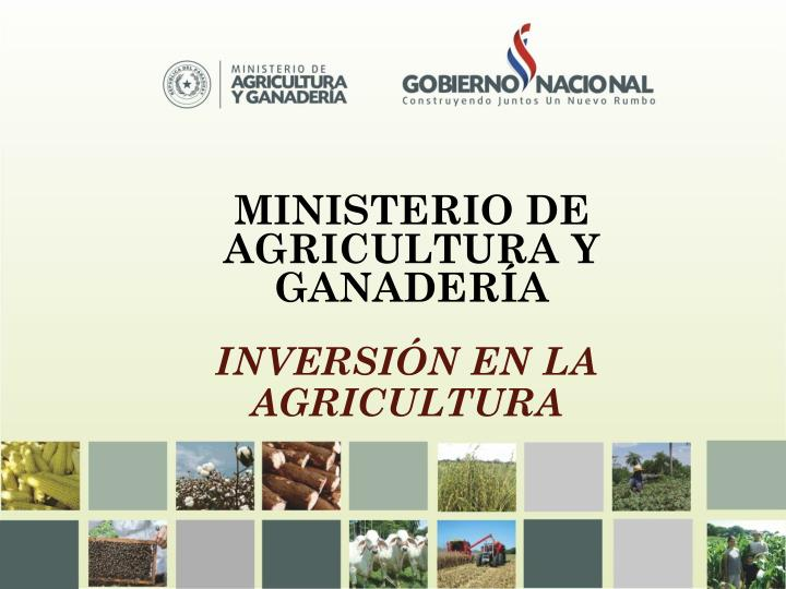 Ppt ministerio de agricultura y ganader a mag for Ministerio de ganaderia