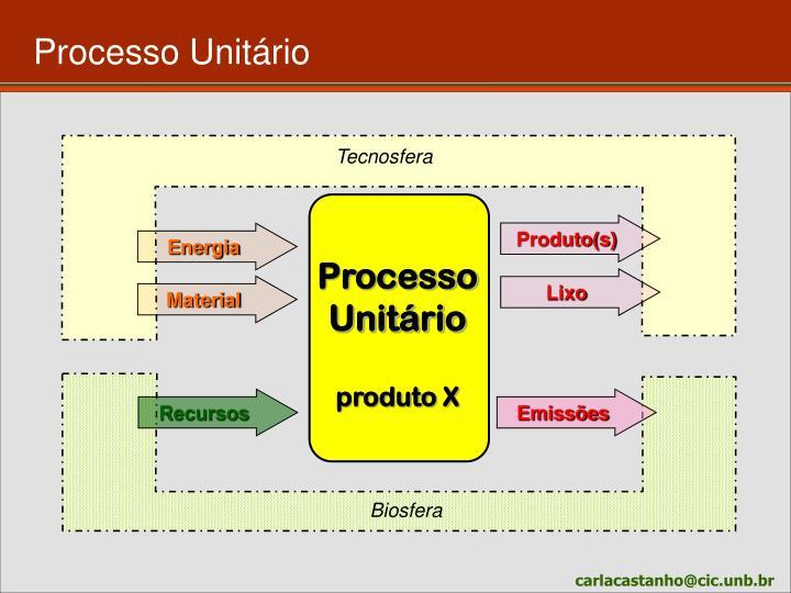 Processo Unitário