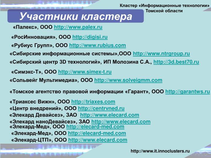 Кластер «Информационные технологии»