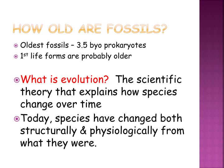 How old are fossils?