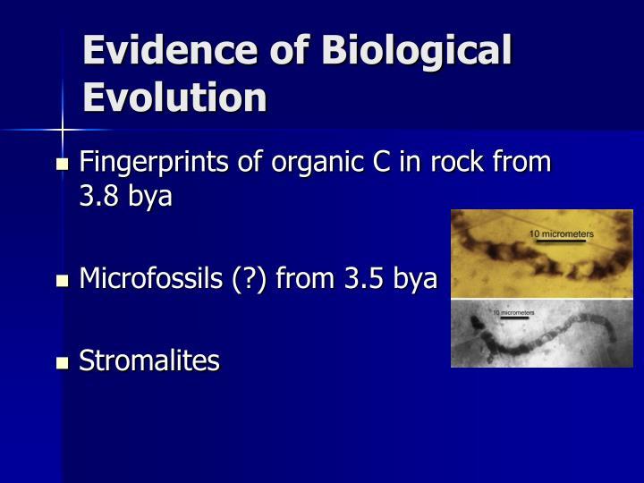 Evidence of Biological Evolution