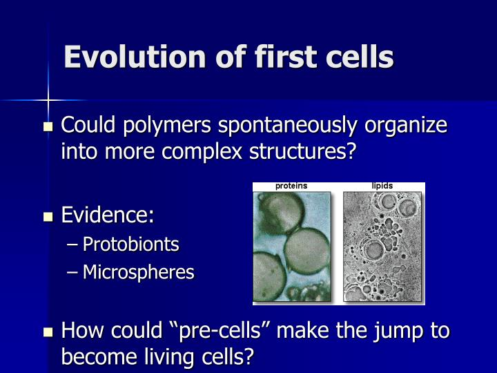 Evolution of first cells