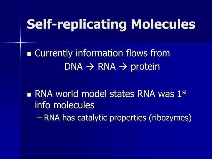 Self-replicating Molecules