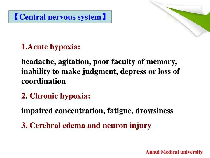 【Central nervous system】