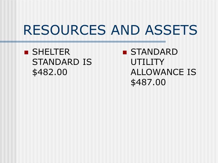 SHELTER STANDARD IS $482.00