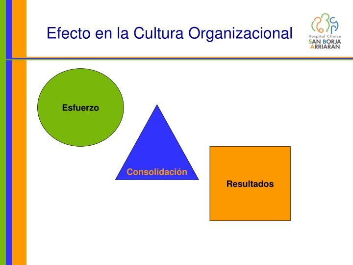 Efecto en la Cultura Organizacional