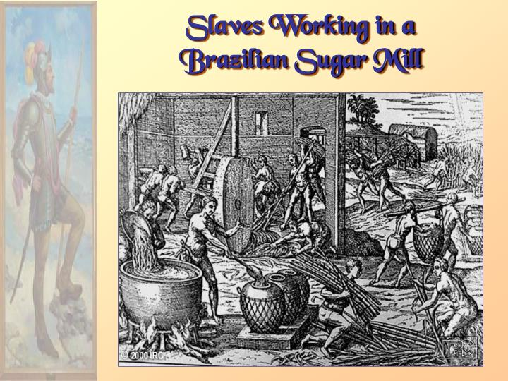 Slaves Working in a