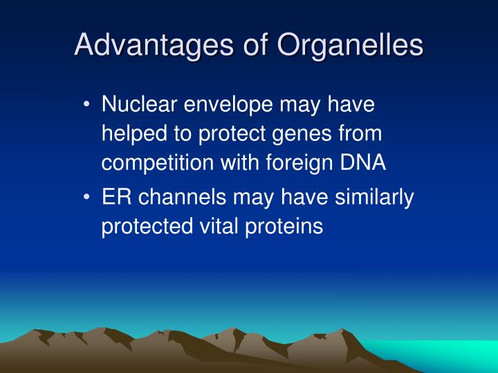 Advantages of Organelles