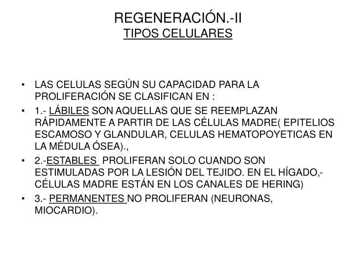 REGENERACIÓN.-II