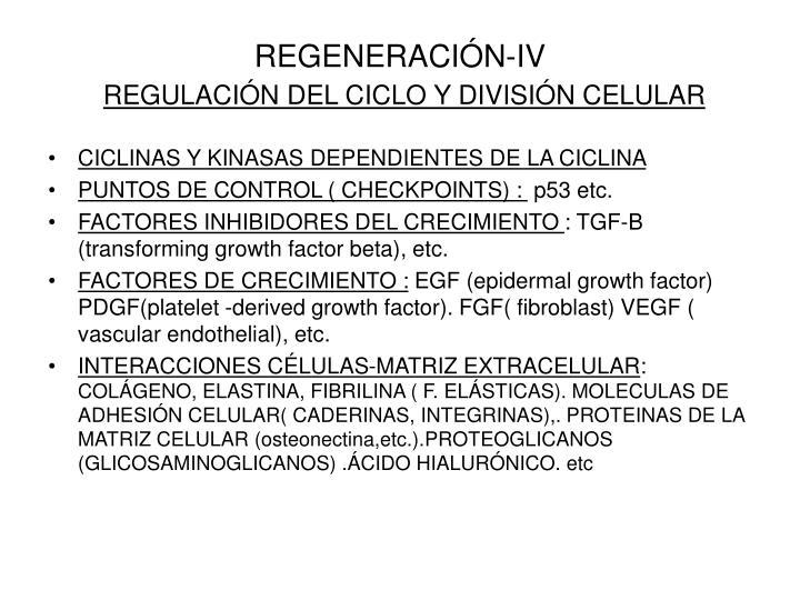 REGENERACIÓN-IV