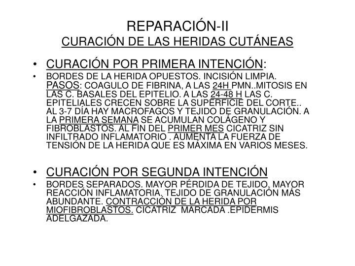 REPARACIÓN-II