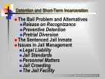 detention and short term incarceration1
