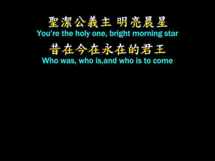 聖潔公義主 明亮晨星