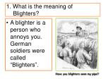 1 what is the meaning of blighters