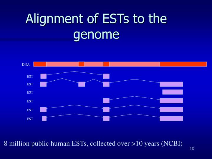 Alignment of ESTs to the genome