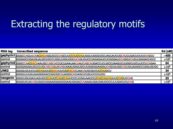 Extracting the regulatory motifs