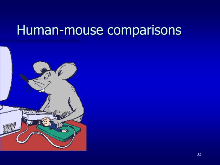 Human-mouse comparisons