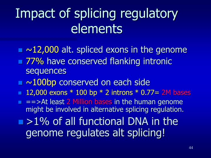 Impact of splicing regulatory elements