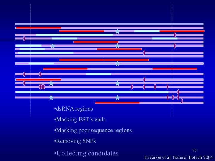 dsRNA regions