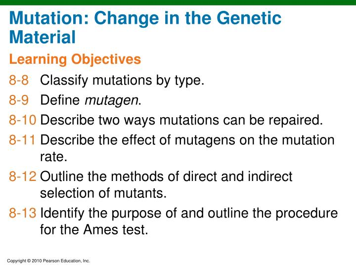Mutation: Change in the Genetic Material