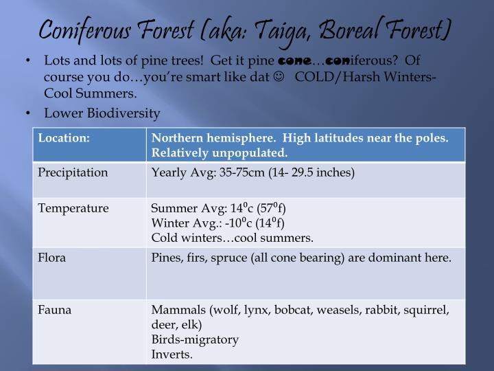 Coniferous Forest (aka: Taiga, Boreal Forest)