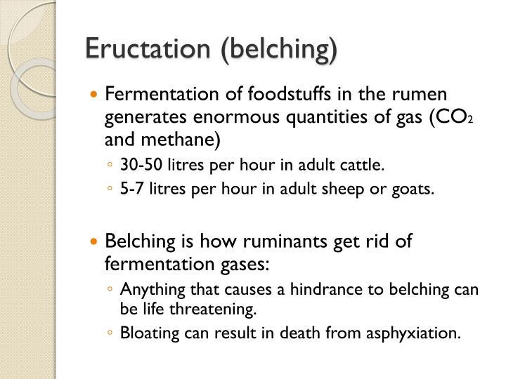 Eructation (belching)