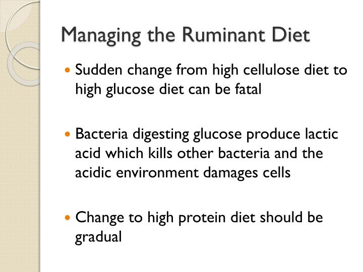 Managing the Ruminant Diet