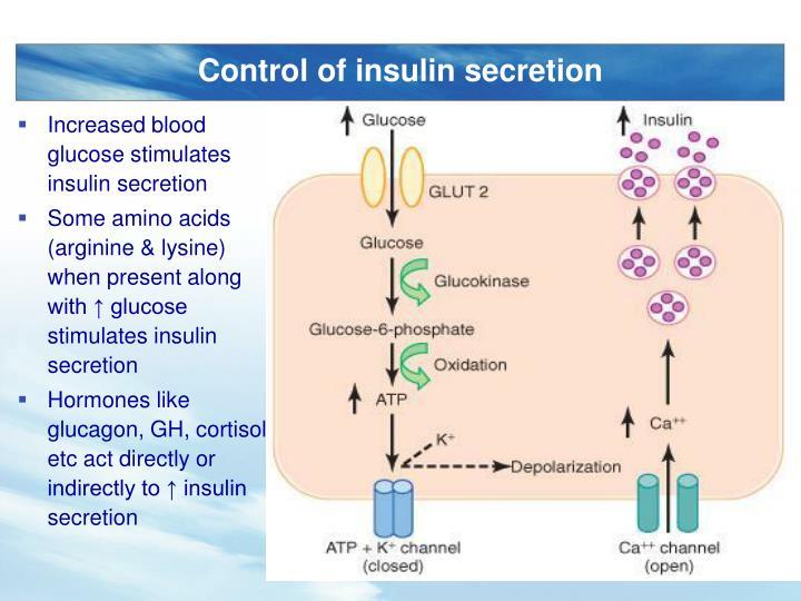 Control of insulin secretion