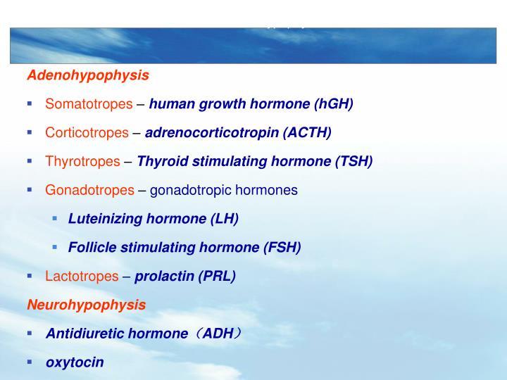 Hormones of hypophysis