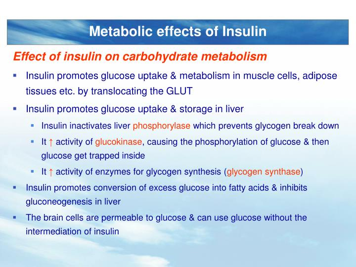 Metabolic effects of Insulin