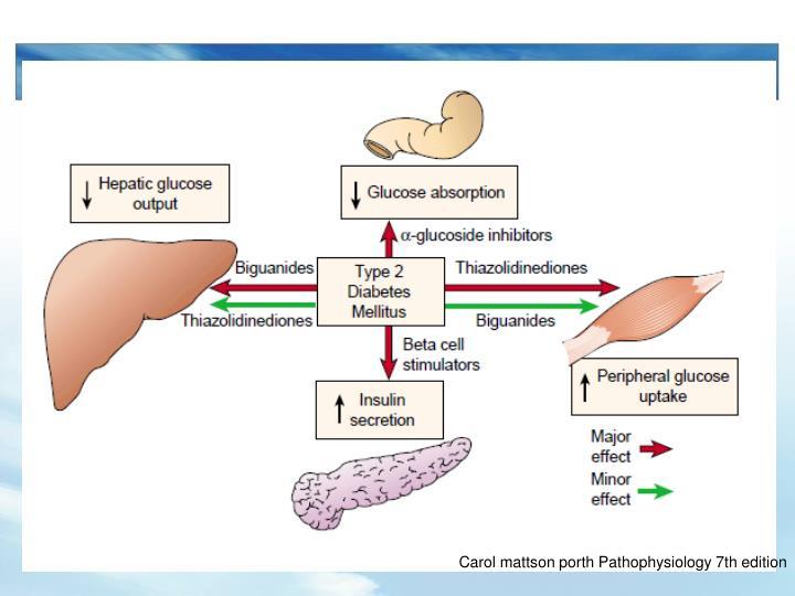 Carol mattson porth Pathophysiology 7th edition