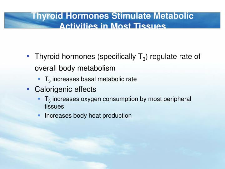 Thyroid Hormones Stimulate Metabolic Activities in Most Tissues