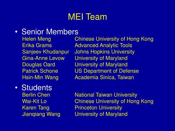 MEI Team
