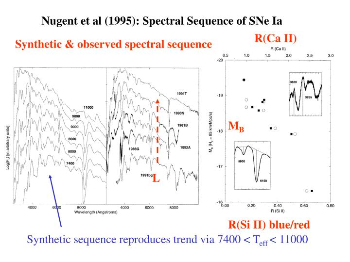Nugent et al (1995): Spectral Sequence of SNe Ia