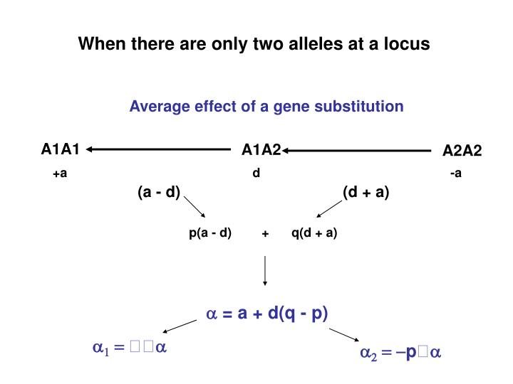 When there are only two alleles at a locus