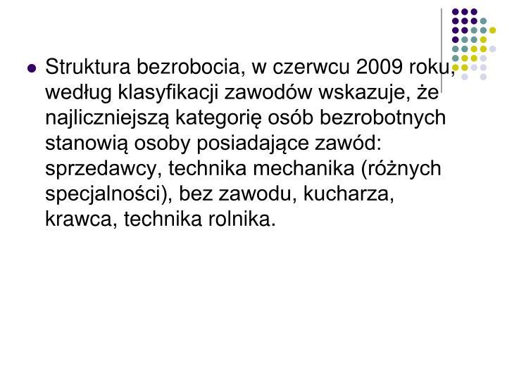 Struktura bezrobocia, w czerwcu 2009 roku, według klasyfikacji zawodów wskazuje, że najliczniejszą kategorię osób bezrobotnych stanowią osoby posiadające zawód: sprzedawcy, technika mechanika (różnych specjalności), bez zawodu, kucharza, krawca, technika rolnika.