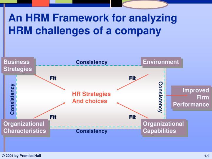 An HRM Framework for analyzing HRM challenges of a company