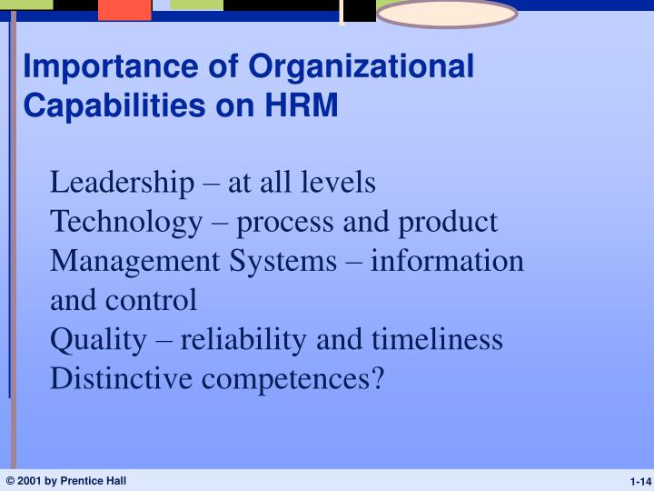 Importance of Organizational Capabilities on HRM