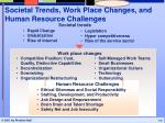 societal trends work place changes and human resource challenges