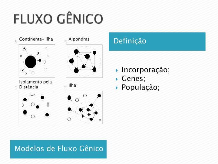 FLUXO GÊNICO
