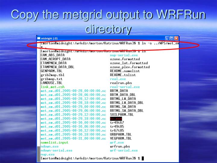 Copy the metgrid output to WRFRun directory