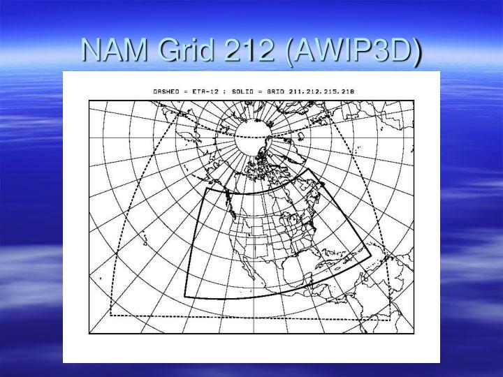 NAM Grid 212 (AWIP3D)